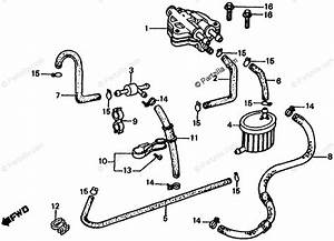Honda Atv 1985 Oem Parts Diagram For Fuel Pump