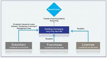 Holding Company Structure Hong Kong Business Hongkong