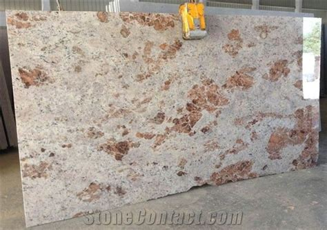 Mocha Ivory Granite Slabs Tiles, India Ivory Granite Butterfly Kitchen Accessories Industrial Storage Metal Modern Home Dunelm Mill Disney Corner Bread
