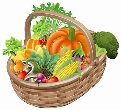 Vegetables Basket Clipart Transparent Veggies Yopriceville Previous