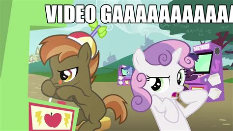 Pony Memes - my little pony friendship is magic mlp memes quotes