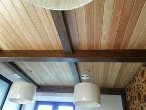 Peinture Pour Lambris : peinture pour peindre lambris vernis tarif artisan ~ Melissatoandfro.com Idées de Décoration