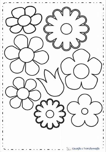Flores Molde Moldes Flor Papel Imprimir Eva