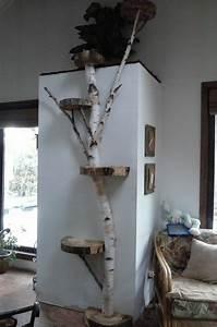Arbre à Chat Fait Maison : l 39 arbre chat un terrain d 39 aventures et de repos pour votre ami ~ Melissatoandfro.com Idées de Décoration