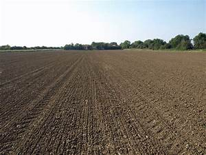 File:Tilled Field near Goxhill Hall - geograph.org.uk ...
