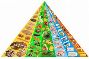 Food Pyramid Stock Image  Image Of Cooking  Cereal  Beef