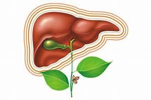 Какие лекарства лечат цирроз печени