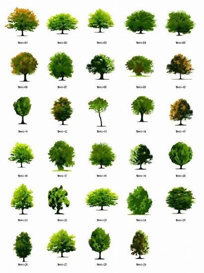 Landscape Clipart Plant Arch Trees Architecture Vector