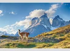 Patagonia Argentina v Chile Blog 2018 Audley Travel