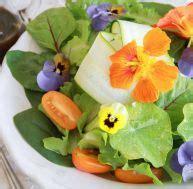 comment cuisiner des haricots verts cuisine conseils et astuces pratique fr