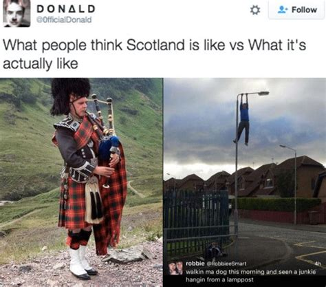 scottish tweets    funny theyll cure