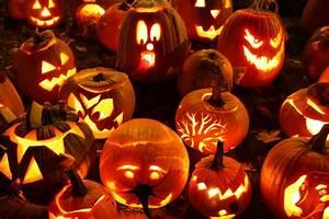 50, Best, Halloween, Scary, Pumpkin, Carving, Ideas, Images, U0026, Designs, 2015, U2013, Designbolts