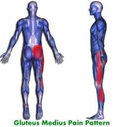 Gluteus Medius Muscle Pain Symptoms