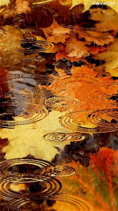 Rain Screensavers Waterfall Awesome Effects