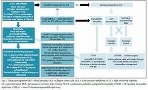 Read  U0026 Download The 12 Lead Ecg In Acute Coronary
