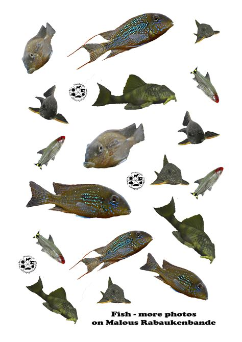 Baixar Planer Aquarium Kostenlos Downloaden