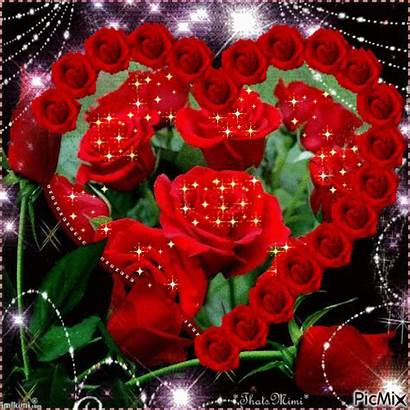 Rose Hearts Flowers Rosse Roses Gifs Flores