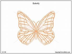 Butterfly Diagram