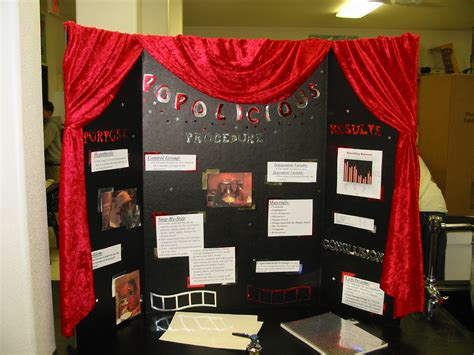 Pin Science Fair Projects Solar Cooking Plans On Pinterest