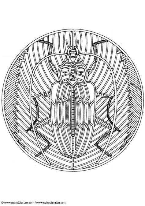 disegno da colorare mandala scarabeo cat