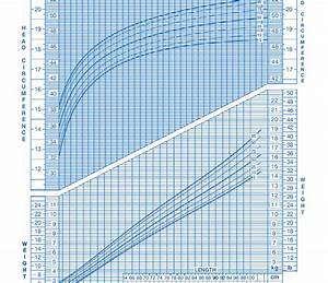 Wallalaf Children Weight Chart By Age