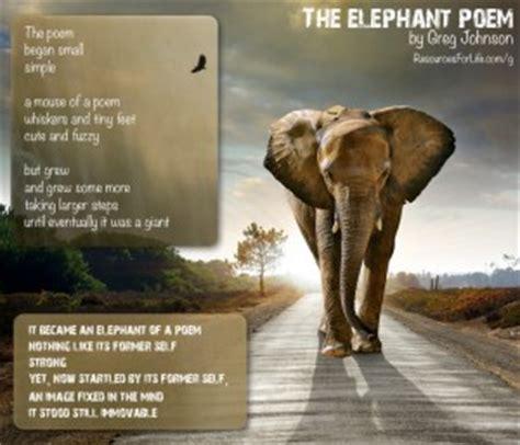 elephant   room quotes quotesgram