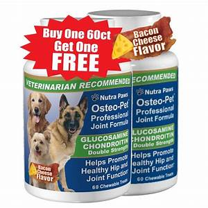glucosamine for dogs with chondroitin osteo pet professional joint formula
