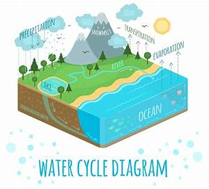Water Cycle Diagram On Behance