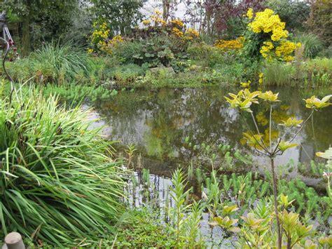 Naturnaher Garten  Galabau Mähler Naturgarten