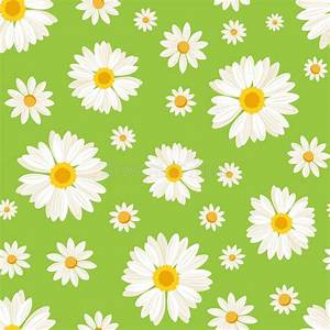 Seamless Pattern With Daisy Flowers On Green. Vect Stock ...