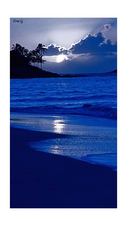 Beach Night Scenes Animated Nature Moon Beaches