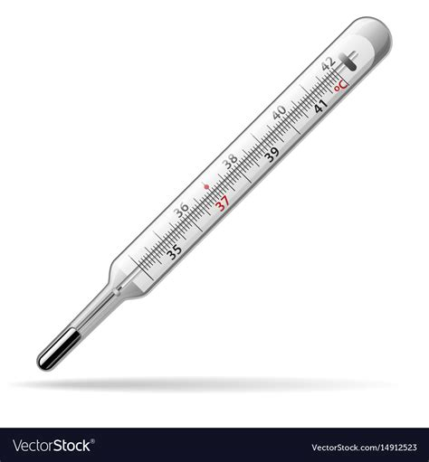 thermometer for thermometer a glass mercury thermometer vector image