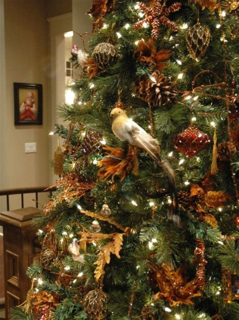 bird on the christmas tree pictures photos and images
