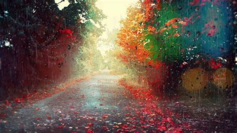 Rainy Background Rainy Season Background Hd