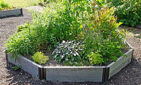 Edible Landscaping Ideas Design An Urban Vegetable Garden