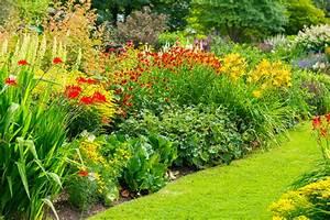Winterharte Pflanzen Liste : winterharte montbretien pflanzen das sollten sie beachten ~ Eleganceandgraceweddings.com Haus und Dekorationen
