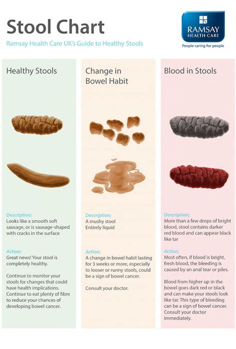 bloody in stool bowel cancer symptoms how often should you poo healthy