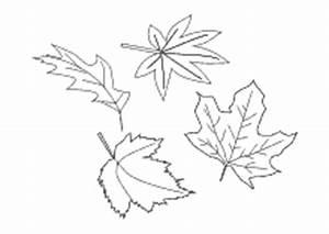 Blätter Vorlagen Zum Ausschneiden : herbst ausmalbilder herbstliche malvorlagen ausdrucken ~ Lizthompson.info Haus und Dekorationen