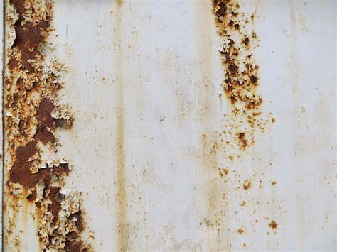 fotos gratis madera blanco textura piso antiguo