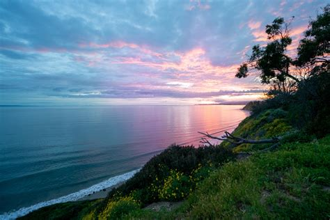 Best Time To Visit Californias Central Coast Bearfoot