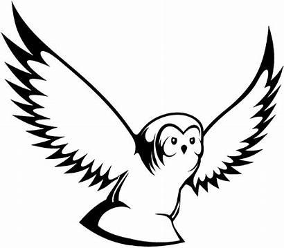 Burung Hantu Putih Hitam Gambar Baju Animasi