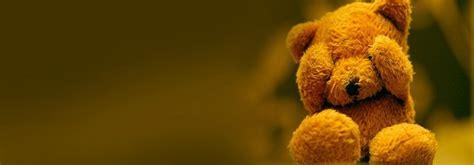 teddy bear  facebook cover photo weneedfun