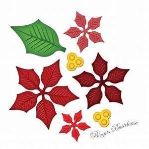 Weihnachtsstern Pflanze Kaufen : spellbinders stanzschablone weihnachtsstern s5 055 kaufen ~ Michelbontemps.com Haus und Dekorationen