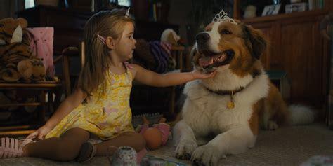 gail mancuso interview  dogs journey screenrant