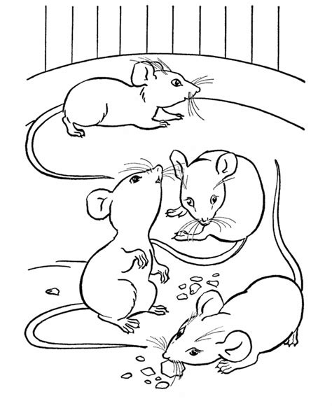 farm animal coloring page mice eating cheese colouring