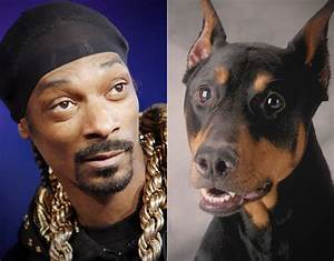 13 Reasons Snoop Dogg Is Probably Actually A Dog - BarkPost