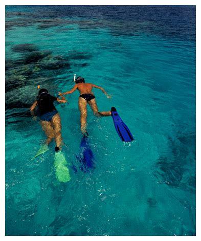 Honda Snorkeling bahia honda snorkeling