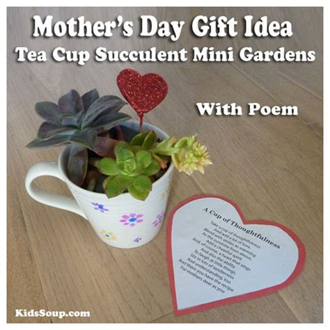 preschool mothers day s day gift idea for tea cup succulent mini 565