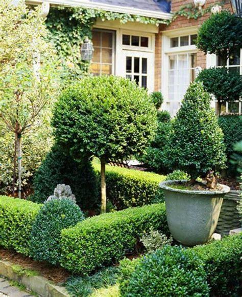 dreamy  classic boxwood gardens