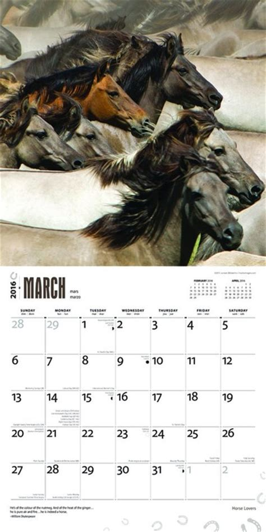 horse calendars ukpostersabposterscom